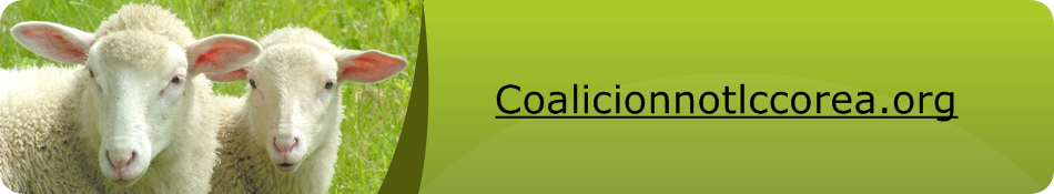 Coalicionnotlccorea.org – הבלוגיה